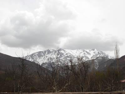 کوه هزار